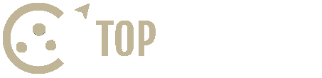 Top in Search logo